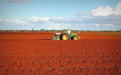 Кристофор Павлов: Селското стопанство е с най-голям потенциал в икономиката