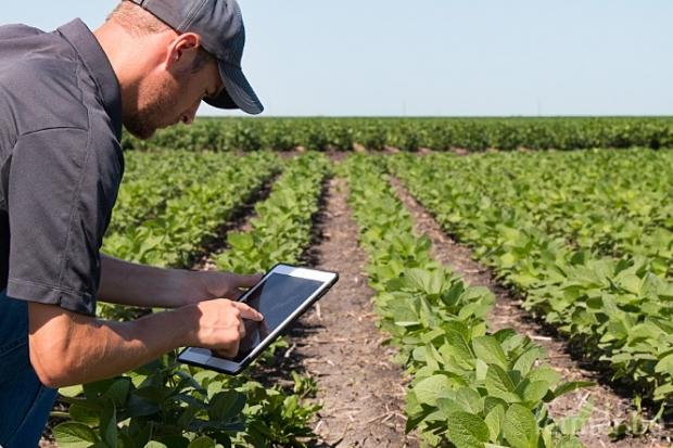 Агроиновации: Дигитални решения в помощ на фермерите в Испания